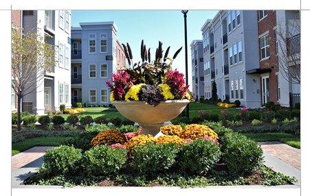 Commercial landscape vase and garden designs