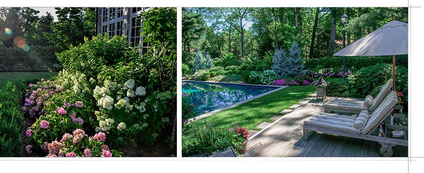 Backyard landscape architecture with flowers