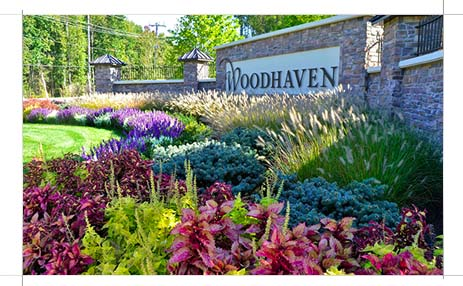 Commercial landscape design with bright flowers