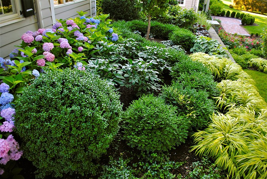 Intimate garden design for residential home
